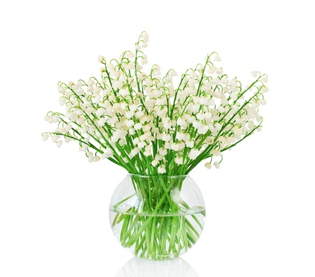 lily of the valley: Bouquet of lilies of the valley on white background