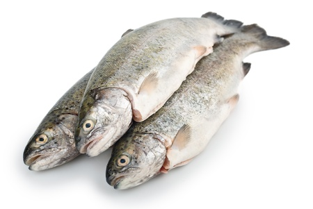 Three fresh trout fish isolated on white background Stock Photo