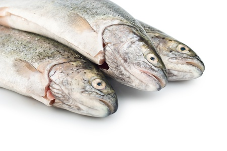 Three trout fish is prepared isolated on the white background Stock Photo - 14268655