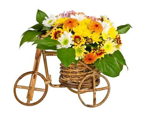 Decorative bicycle vase with flowers isolated on white background Stock Photo