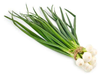 An isolated green onion bunch