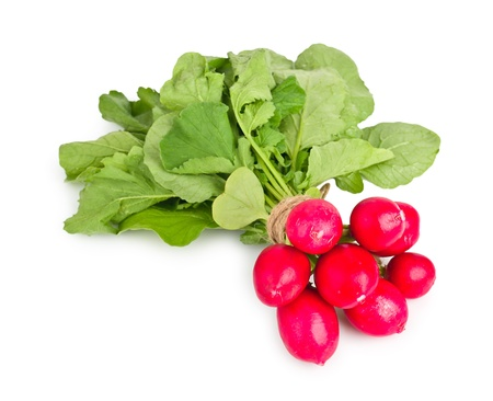 Fresh radishes on a white background photo
