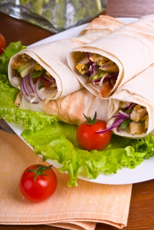 Hot fresh and tasty Eastern traditional shawarma plate, close-up Stock Photo - 19319226