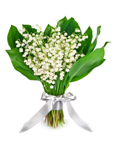 Spring bouquet flowers of lilies of the valley isolated on white background photo