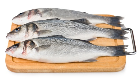Sea Bass on wooden board isolated on white background