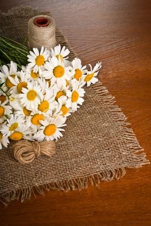 Chamomile flower on coarse napkin on wooden background