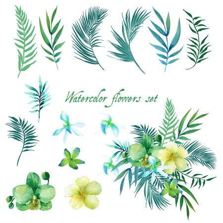 tropical leaves: Watercolor floral set for your design.