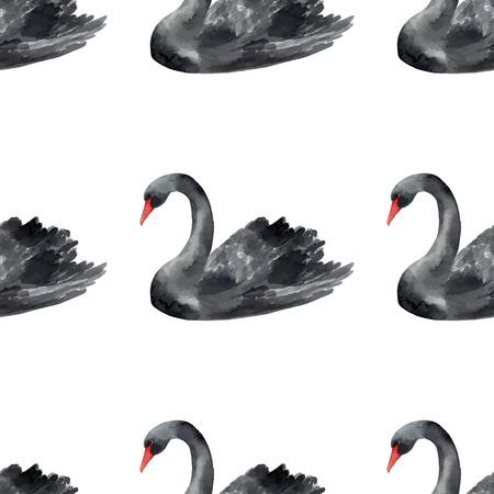 black swan: Black Swan watercolor illustration. Seamless pattern.