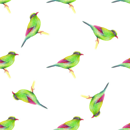 soulful: Watercolor seamless pattern with  birds. Vector illustration