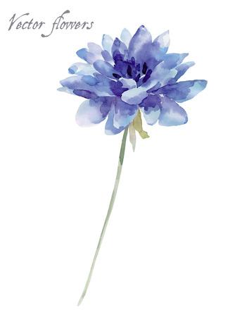 flor azul, ejemplo de la acuarela aislado en el fondo blanco Ilustración de vector