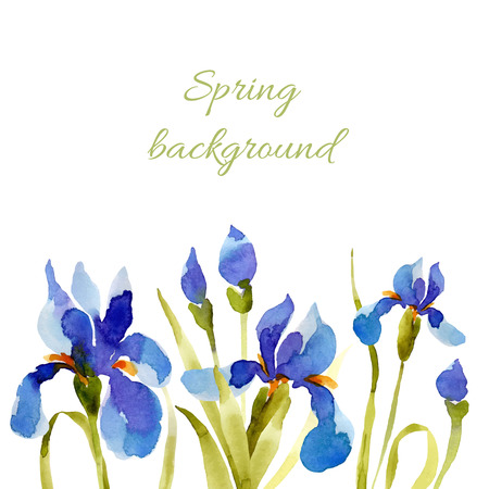 lowers: Spring background. Watercolor lowers. Can be used for greeting and wedding cards, gifts, postcards, invitations.