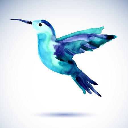 Hummingbird watercolor painting bird on the white background. Watercolor illustration. Stock Illustratie