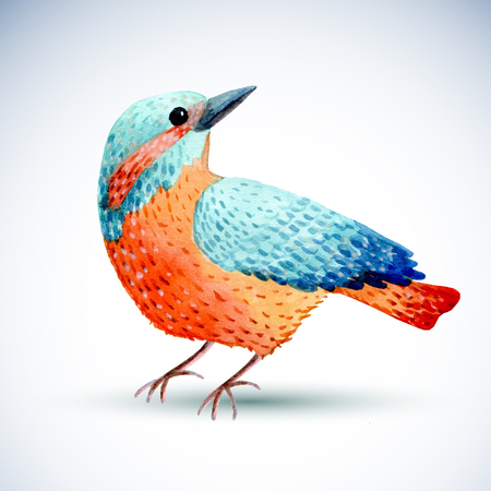 primaries: Watercolor bird isolated on white background. Vector illustration for your design.