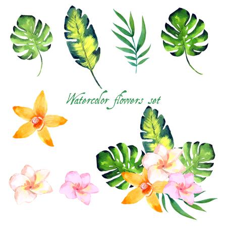 Aquarelle ensemble floral pour votre conception illustration Banque d'images - 63721060