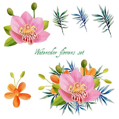 Aquarelle ensemble floral pour votre conception illustration Banque d'images - 63721061