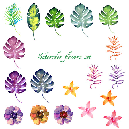 Aquarelle ensemble floral pour votre conception illustration Banque d'images - 63721063