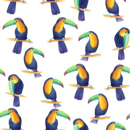 Forme transparente à l'aquarelle avec toucans et feuilles de palmier Banque d'images - 63721071