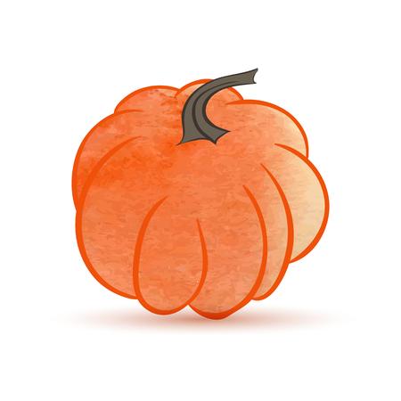 Pumpkin isolated on white of illustration.