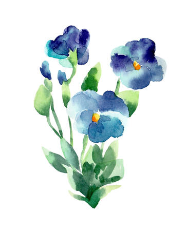 violets: Watercolor illustration of a violets on a white background. Background for your design and decor.