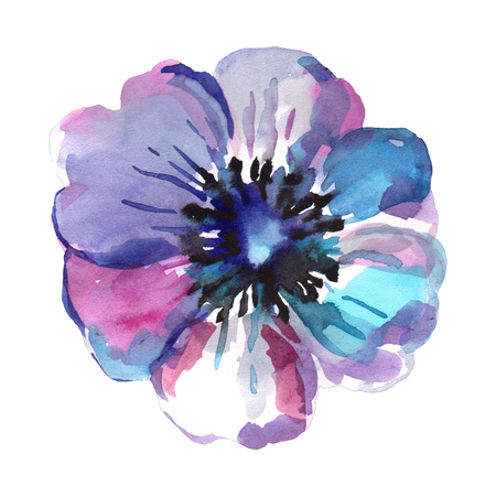 Watercolor illustration of a blue flower on a white background. Background for your design and decor. Standard-Bild