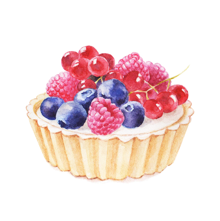 blueberry cheesecake: Tartlet with fruit hand drawn watercolor illustration on white background. It can be used for card, postcard, cover, invitation, wedding card, birthday card.