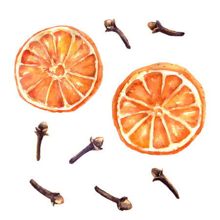 Watercolor set of christmas spice. Orange and cloves hand painted illustration on white background Standard-Bild