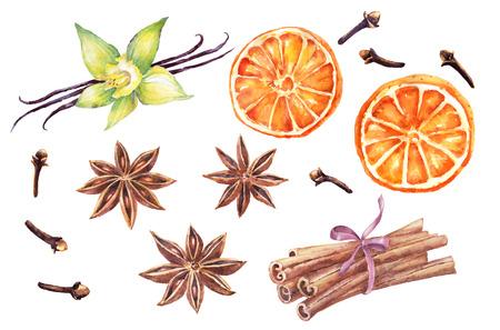 Watercolor set of christmas spice. Anise, cinnamon,vanilla, clove,orange hand painted illustration on white background