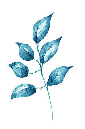 Feuille Aquarelle sur blanc élément de conception d'arrière-plan. Il peut être utilisé pour la carte, carte postale, couverture, invitation, carte d'anniversaire. Banque d'images - 67674012
