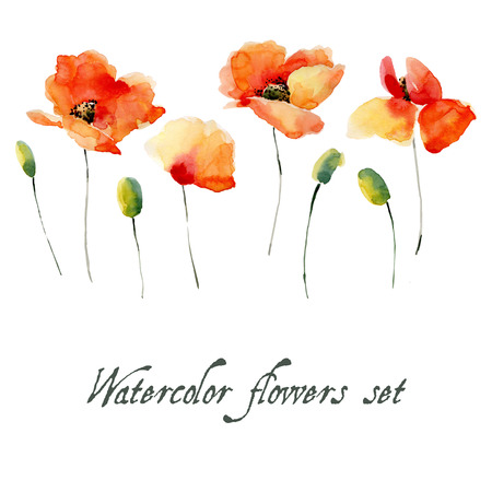 Set of watercolor poppy flowers on a white background. Background for your design and decor. Reklamní fotografie