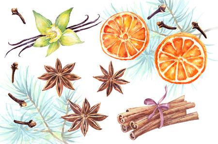 clove: Watercolor set of christmas spice. Anise, cinnamon,vanilla, clove,orange hand painted illustration on white background