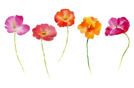 Set de fleurs aquarelle pour votre design. Ensemble de fleurs isolé sur fond blanc. Fleur illustration dessinée à la main. Banque d'images - 67676584