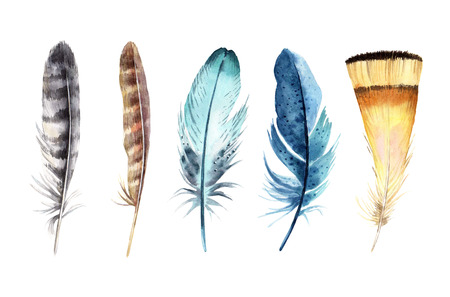 Watercolor feather set isolated on white background. Design for T-shirt, invitation, wedding card. Vintage Hand drawn illustration.