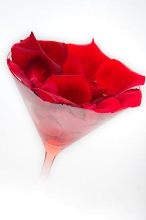 Petals of roses photo