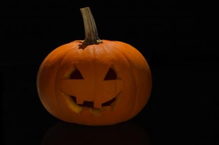 Orange pumpkin on black background Stock Photo - 16025465