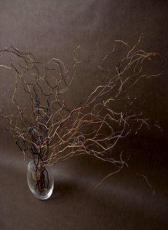 twigs in vase