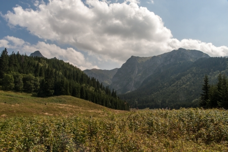 tatry: Tatry Mountains Stock Photo