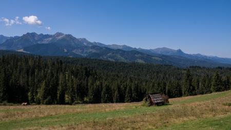 arbre: Tatry Mountains View from Bukowina Tatrzanska