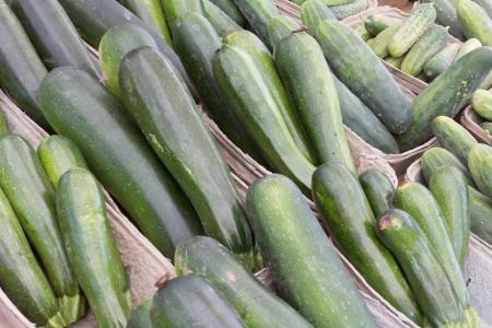 cucumbers: Cucumbers at the Farmer Stock Photo