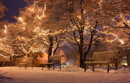 winter evening: Following the first snow of the season, the park comes alive with light  Stock Photo