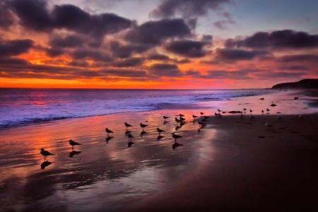 クリスタル コーブ ビーチ、カリフォルニア州で雄大な太平洋の夕日