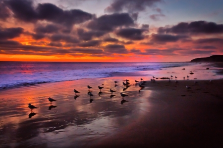Magnificant Pacific Ocean Sunset at Crystal Cove Beach, California
