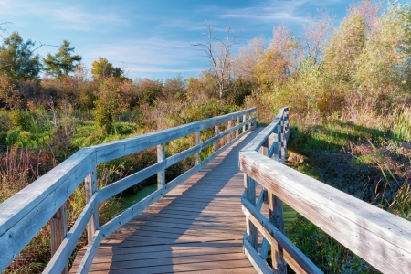 Bridge Over the Marsh at Lake McKusick in Stillwater, Minnesota photo