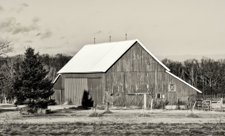 barn black and white: Minnesota Winter Barn in Black and White