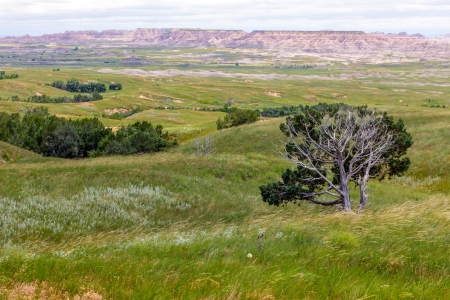 Grasslands Meet the Badlands in South Dakota, USA  photo