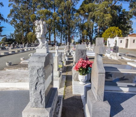 carlos: Lines of Grave Markers at San Carlos Cemetery.