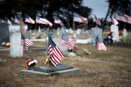 honoring: Cemetery Adorned with American Flags Honoring War Dead