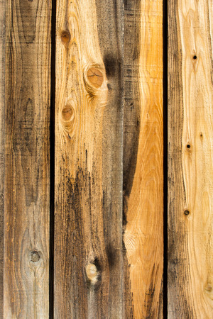 knotty: Rough sawn knotty wood background or backdrop