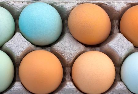 grouping: Grouping of multi-colored organic eggs macro.