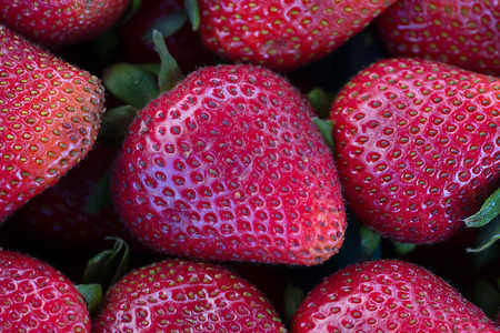 grouping: Grouping of strawberries in selective focus