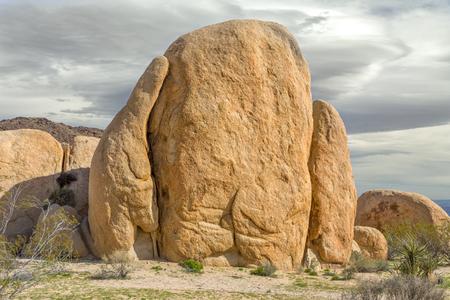 joshua tree national park: Skull Rock at Joshua Tree National Park, California, USA. Stock Photo